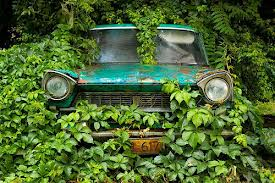 Rusty car 11